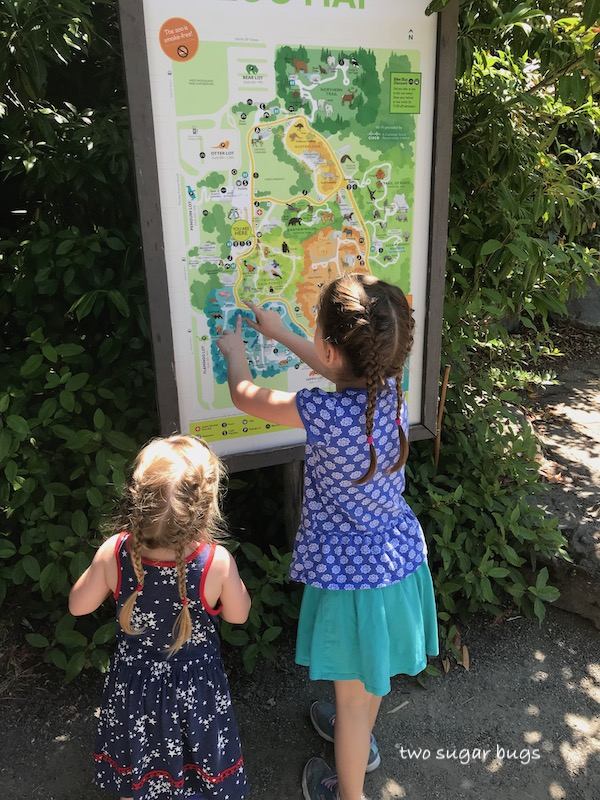 looking at a map of the zoo