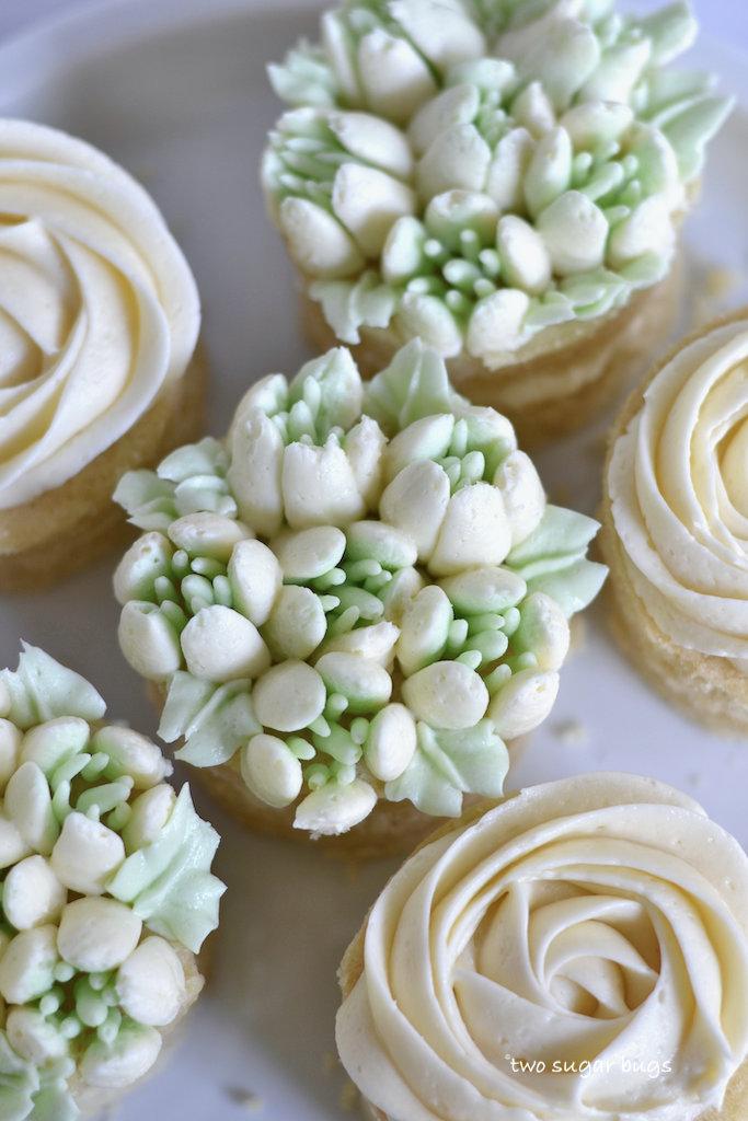 decorated vanilla mint sugar cookie bars