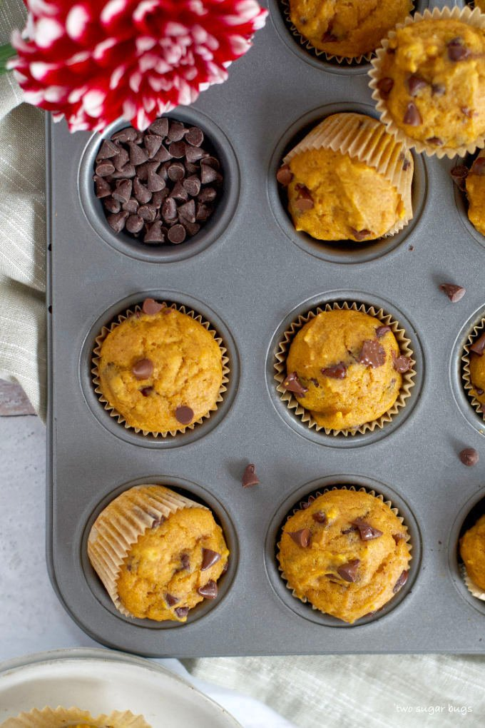 mini pumpkin chocolate chip muffins and chocolate chips in a muffin tin